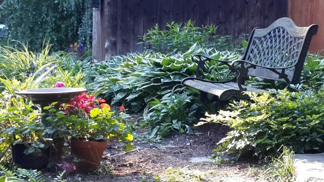 garden bench and birdbath